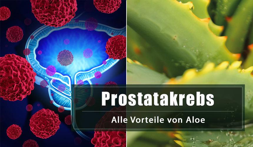 Prostatakrebs: die Vorteile von Aloe